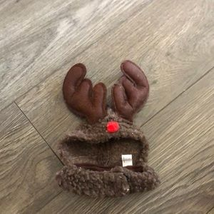 FREE Reindeer costume for small pet